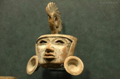 c592-Muzeum Antropologiczne