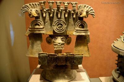 c607-Muzeum Antropologiczne