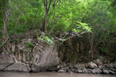 d028-Rejs kenionem Grijalva River