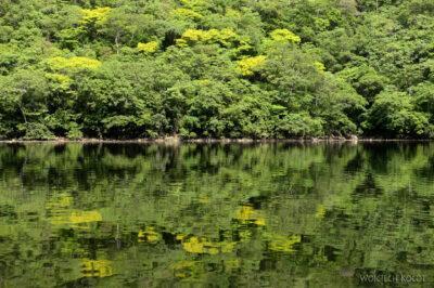 d063-Rejs kenionem Grijalva River