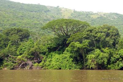 d087-Rejs kenionem Grijalva River