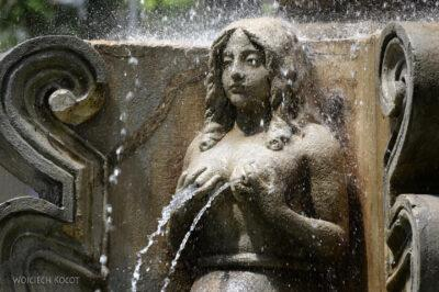 i014-Antigua-fontanna naRynku