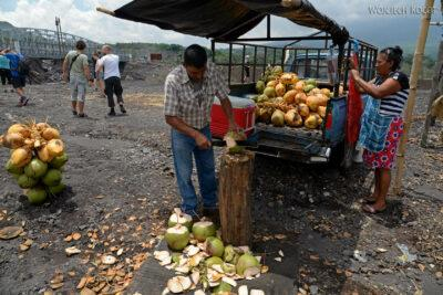 j091-kokos dopicia