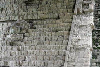 n057-Copan-Escalinata Jeroglifica