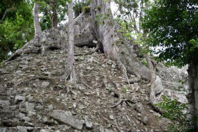 n061-Copan-na południe odPatio Occidental