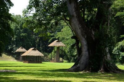 o037-Parque Arqueologica Quirigua