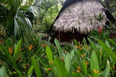 o102-W Hacienda Tijax