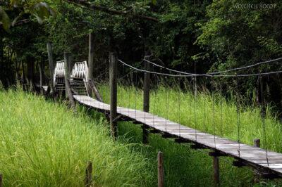 p211-Przyroda wokolicy Hacienda Tijax