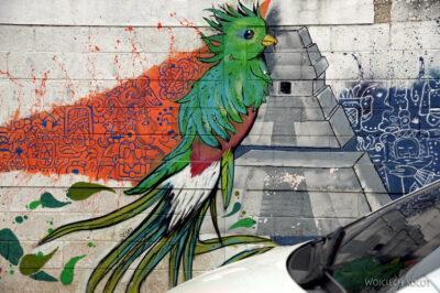 q016-Murale wSanta Elena