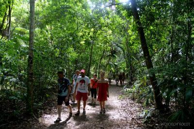 r031-Tikal-przez dzunglę
