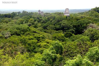 r049-Tikal