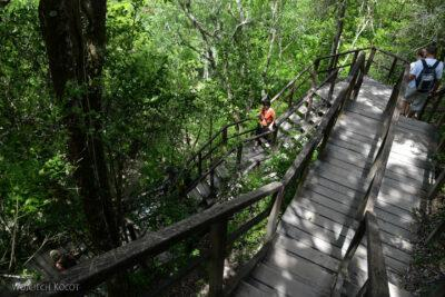 r058-Tikal-Piramida