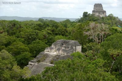 r073-Tikal