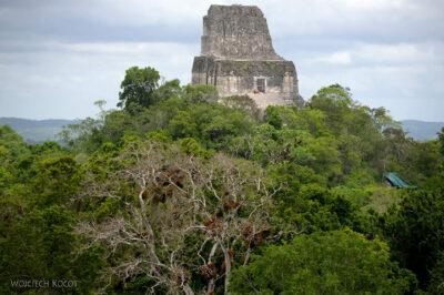 r074-Tikal