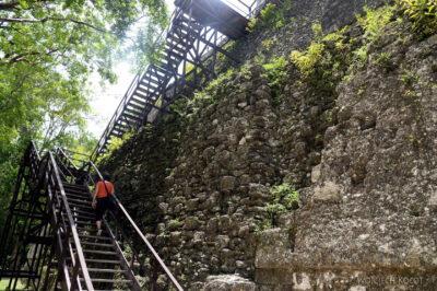 r113-Tikal-Templo II