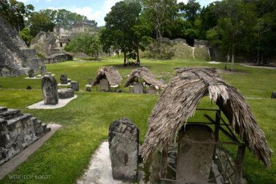 r140-Tikal