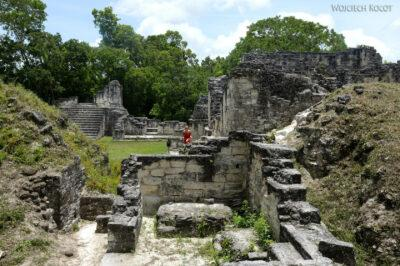 r171-Tikal