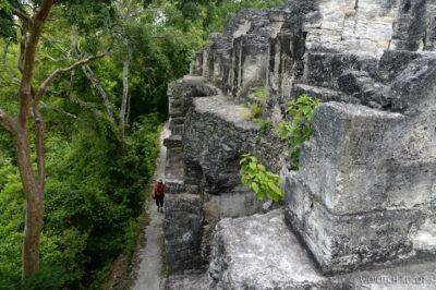r175-Tikal