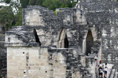 r179-Tikal