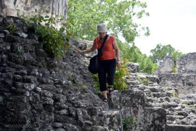 r183-Tikal