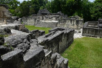 r188-Tikal