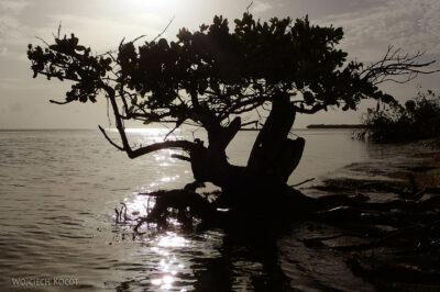 s106-Caye Caulker - podrugiej stronie wyspy