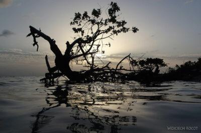 s109-Caye Caulker - podrugiej stronie wyspy