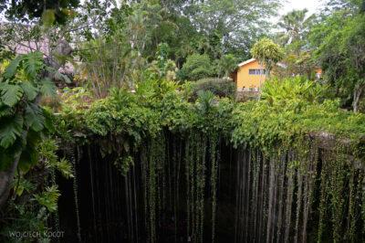 w184-W Cenote Ik-Kil