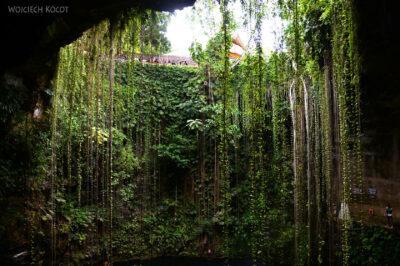 w199-W Cenote Ik-Kil