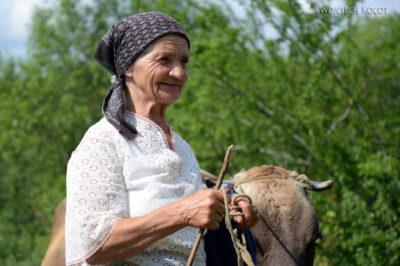 Uk250-Starsza Pani ijej krowa