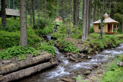 Uk301-W parku przy wodospadzie