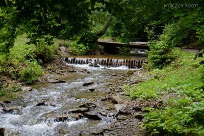 Uk303-W parku przy wodospadzie