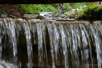 Uk306-W parku przy wodospadzie