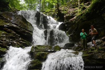 Uk311-W parku przy wodospadzie