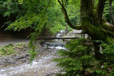 Uk318-W parku przy wodospadzie