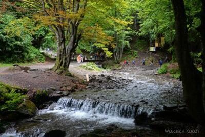 Uk319-W parku przy wodospadzie