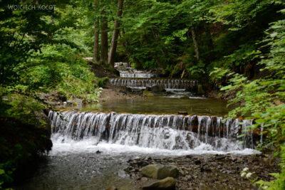Uk323-W parku przy wodospadzie