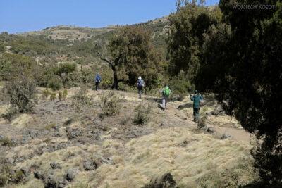 Et05152-Góry-Simien-treking