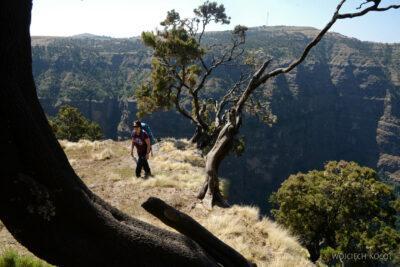 Et05175-Góry-Simien-treking
