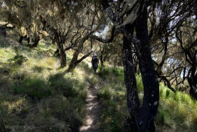 Et05210-Góry-Simien-treking