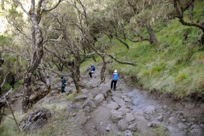 Et05226-Góry-Simien-treking