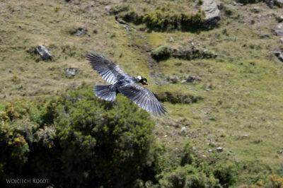 Et06071-Góry-Simien-treking