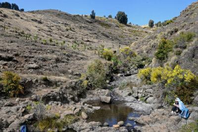 Et06117-Góry-Simien-treking
