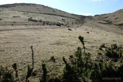 Et07030-Góry-Simien-treking