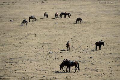 Et07038-Góry-Simien-treking