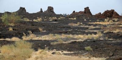 Et12059-Pola lawowe przy wulkanie