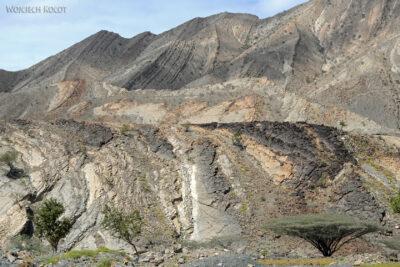 Et13057-Danakil 3-widoczki podrodze