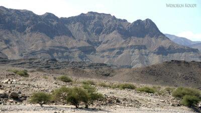 Et13066-Danakil 3-widoczki podrodze