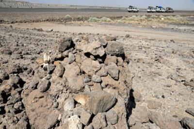 Et13072-Danakil 3-skamieniałe kolalowce