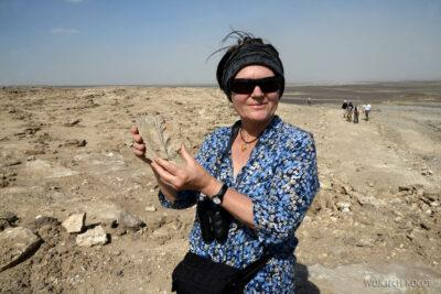 Et13082-Danakil 3-skamieniałe kolalowce-Kwa